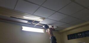 thợ trần lá phông thạch cao đang lắp cho một văn phòng đơn giản